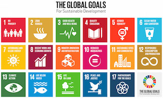 The seventeen global goals