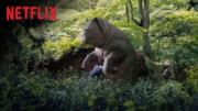 Netflix this week committed to streaming its movies in both Dolby Atmos and Dolby Vision high-dynamic range formats.